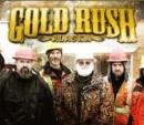 gold rush cat img