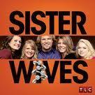 watch series sister wives online