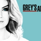 Grey's anatomy season 13 abc tv series