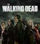 The Walking Dead Season 11 amc