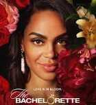 the bachelorette season 18 abc